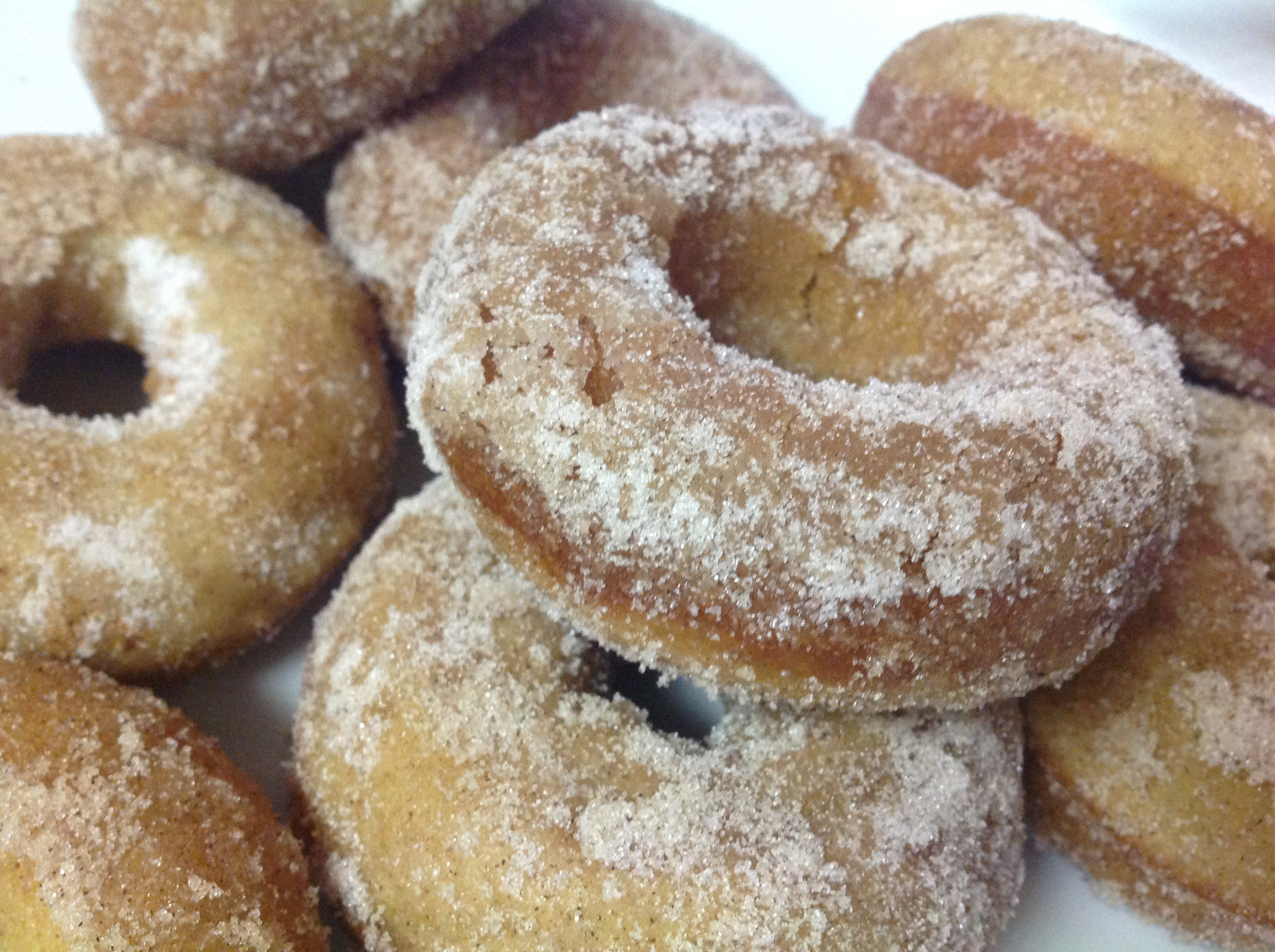 Baked Apple Cider Donuts with Terhune Orchards Apple Cider